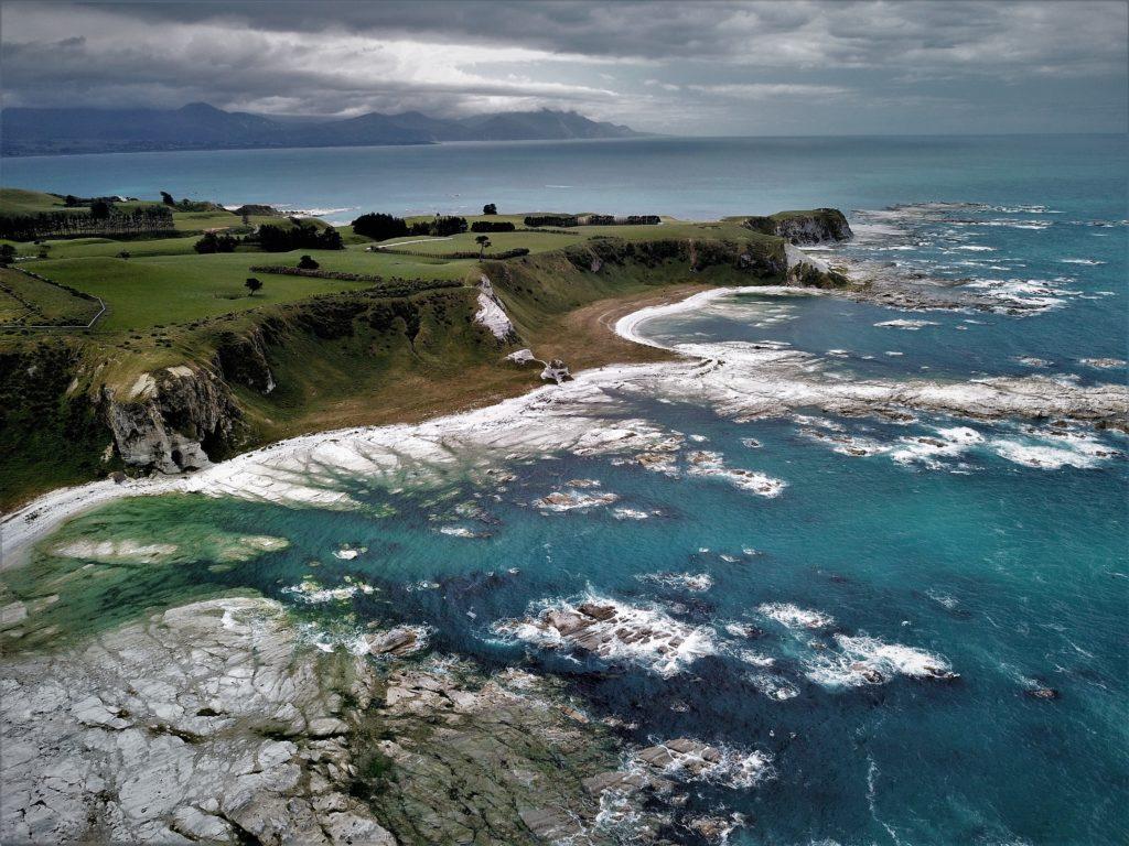 Côte de Nouvelle Zélande peuplée de baleines, dauphins et autres phocidés.