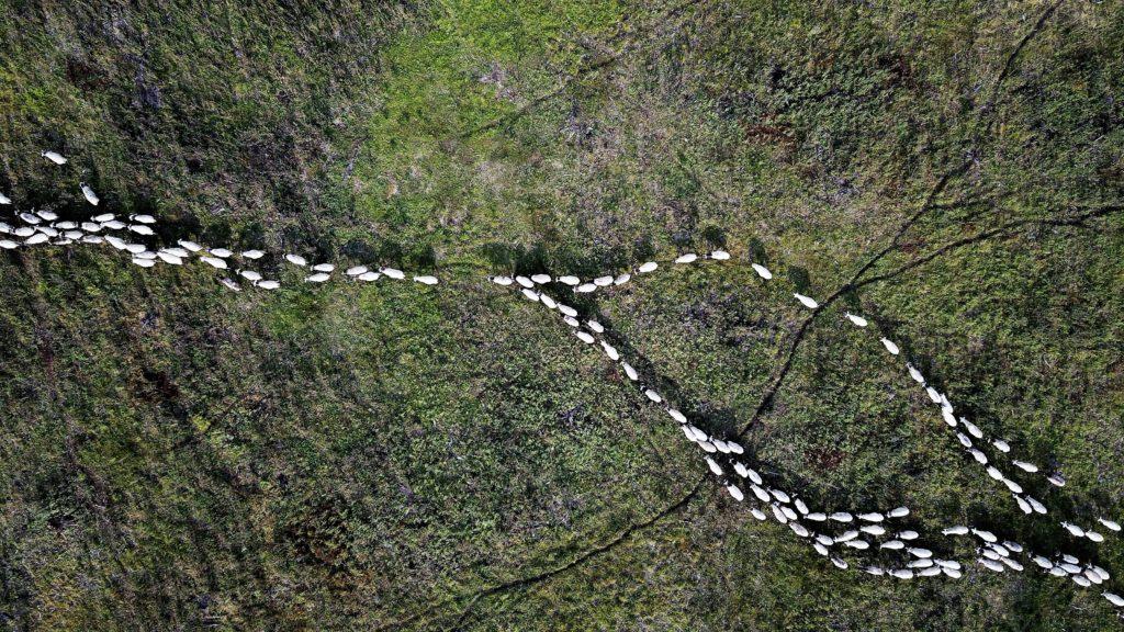La Boucle des Dômes: Dépaysement total lors de cette randonnée dans le Puy de Dôme